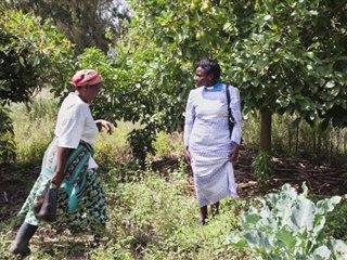 Stigma Under the Lens - Reverend Rahab, Kenya ( World AIDS Day 2011 )