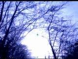 LOST IN THE WOODS court métrage par Mfbaprod