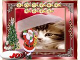 Joyeux Noel et bonne année..par nos amis(es) chats et chiens...-12-22-16-52_wmv
