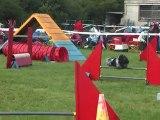 concours agility c'ven fleury2011