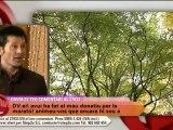 TV3 - Divendres - Els millors boscos de Catalunya