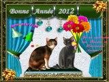 Meilleurs voeux et Bonne année 2012-12-31-14-31_wmv
