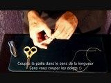 Tour de magie + explication - Episode 6 - Magicien Toulouse