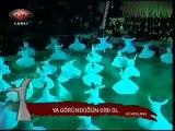 Şeb-i Arus Törenleri 2010-3