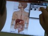 Utilisations pédagogiques des tablettes numériques à l'école élémentaire