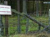 Reportage du 05 décembre 2011 sur TV Luxembourg : Suxy/ Orval : saisies à la chasse