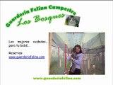Reserva ya en (Guarderia) (Felina) - (Bogota)
