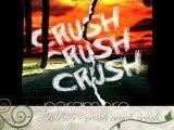 Paramore - Crush Crush Crush cover (Trice)