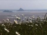 Natura 2000 en Basse-Normandie : quand la biodiversité rime avec démarche partagée mdd tv
