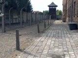 La Pologne verse 10 millions d'euro à la Fondation Auschwitz-Birkenau.