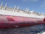 Isola del Giglio - Costa Concordia - VVF ricognizione concordia
