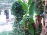 Trivandrum Properties Price : House plot for sale at Itikonam Medical college, Trivandrum