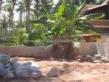 House plots in trivandrum : Land for sale at Thuruvikkal,  Akkulam, Trivandrum