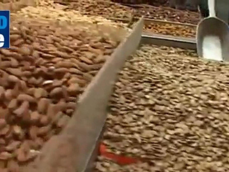 Bank of Israel: Food expensive in Israel
