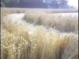 etude Australienne interessante sur les crops Ovni Ufo 1994