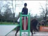 Moi & Madenn - 2ème/44 - Concours Val de Sée -  Club 2 - 22/01/2012