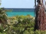Cape Eleuthera resort: Atlantic side of Lighthouse beach