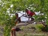 Wyspa Mauritius/ Île Maurice - PlanyNaWakacje