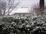 neige du 2.fev.2012