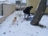 Léo dans la neige !