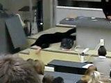 Fac de médecine Amiens, un étudiant pète les plombs en pleins cours