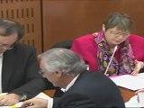 Mercredi 1 février 2012 Commission des affaires culturelles : PPLD formation des maitres