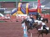 Championnat d'europe de pony games Irlande Finale A part 2 (1)