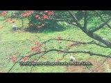 Ấn tượng Việt Nam: 12 mùa xuân và tình yêu với Việt Nam