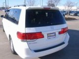 2009 Honda Odyssey for sale in Irving TX - Used Honda by EveryCarListed.com