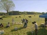 Harvest Moon The Land's Origin - Pubs Japonaises
