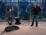 'The Dog Whisperer' Cesar Millan Responds to His Critics
