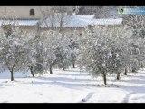 Auriol sous la neige - 11 février 2012 [diaporama] - Auriol Ensemble