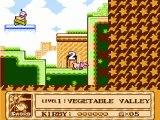 [HaYu] Rétrogaming - Kirby's adventure - Nintendo nes