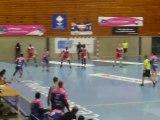 LNH : Cesson Rennes Métropole - Paris Handball / 15ème Journée