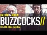 BUZZCOCKS - LOVE YOU MORE (BalconyTV)
