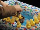 Greek bailout explained by rubber duckies
