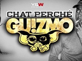 Guizmo - Chat Perché