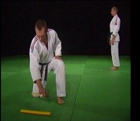 Les 20 techniques imposées de JU-JITSU (DVD FFJDA)
