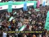 Manifestation grandiose à Hama malgré la répression - Syrie - 08/02/2012 - sous-titres français