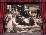 Cirque Pinder à St Chamond 1950