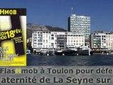 Une FlasHmob à Toulon pour défendre la Maternité de La Seyne