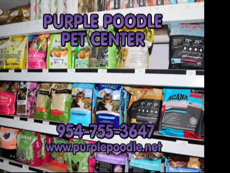PET BOARDING CORAL SPRINGS, WWW.PURPLEPOODLE.NET, PET CENTER , PET SUPPLIES  CORAL SPRINGS.