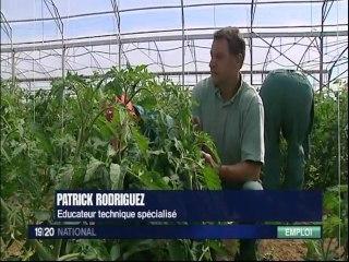 Exploitation agricole embauche des handicapés