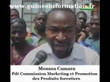 GUINEE : Moussa Camara (Commission produits forestiers : «Mohamed Said Fofana à intérêt à torpiller les citoyens guinéens, au profit des étrangers qui peuvent lui déposer des sacs de billets»
