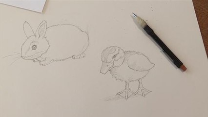 How To Do Drawings Of Baby Animals