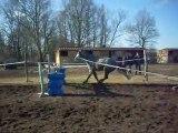 Saut en semi-liberté pour poney :)♥