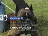 Sommaire émission 30 Millions d'Amis 4/3/2012