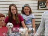 Lake Worth Fl. Gold Buyer, Silver Buyer, Jewelry Buyer, Cash For Gold Lake Worth Gold
