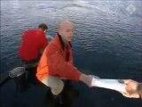 Nova uitzending 12 maart 2005-Dolfijnen slachting japan