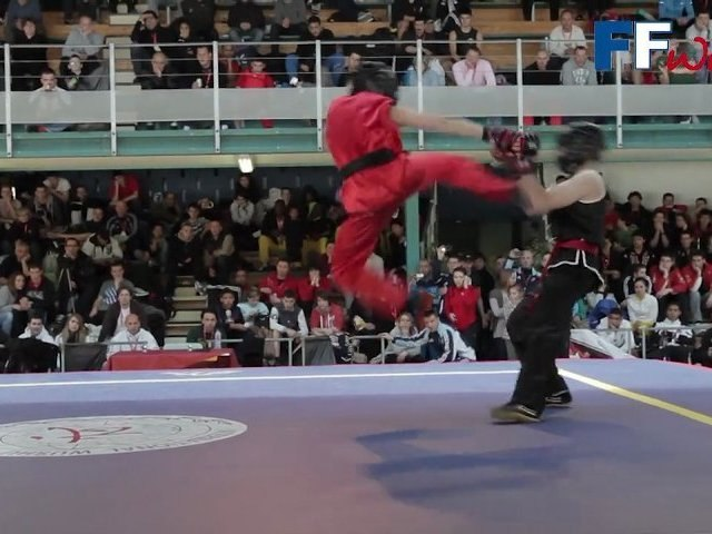 Projet combat kung fu traditionnel FFWushu
